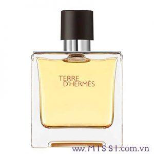 Hermes Terre D'hermes Paris (edp)