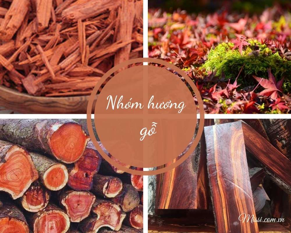 Tat Tan Tat Ve Cac Nhom Huong Trong Nuoc Hoa Phan2 6